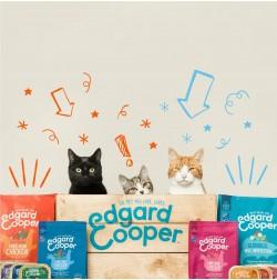 Cibo secco per gatti Edgard & Cooper Grain Free 300g Cibo Umido Edgard & Cooper