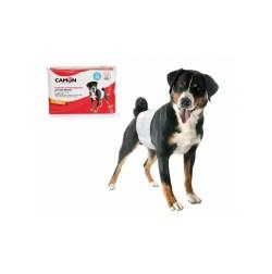Pannolini usa-getta a fascia igienica per cani maschi incontinenti o marcatori Problemi specifici Camon