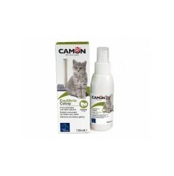 Catnip: Estratto concentrato di erba gatta Home Camon